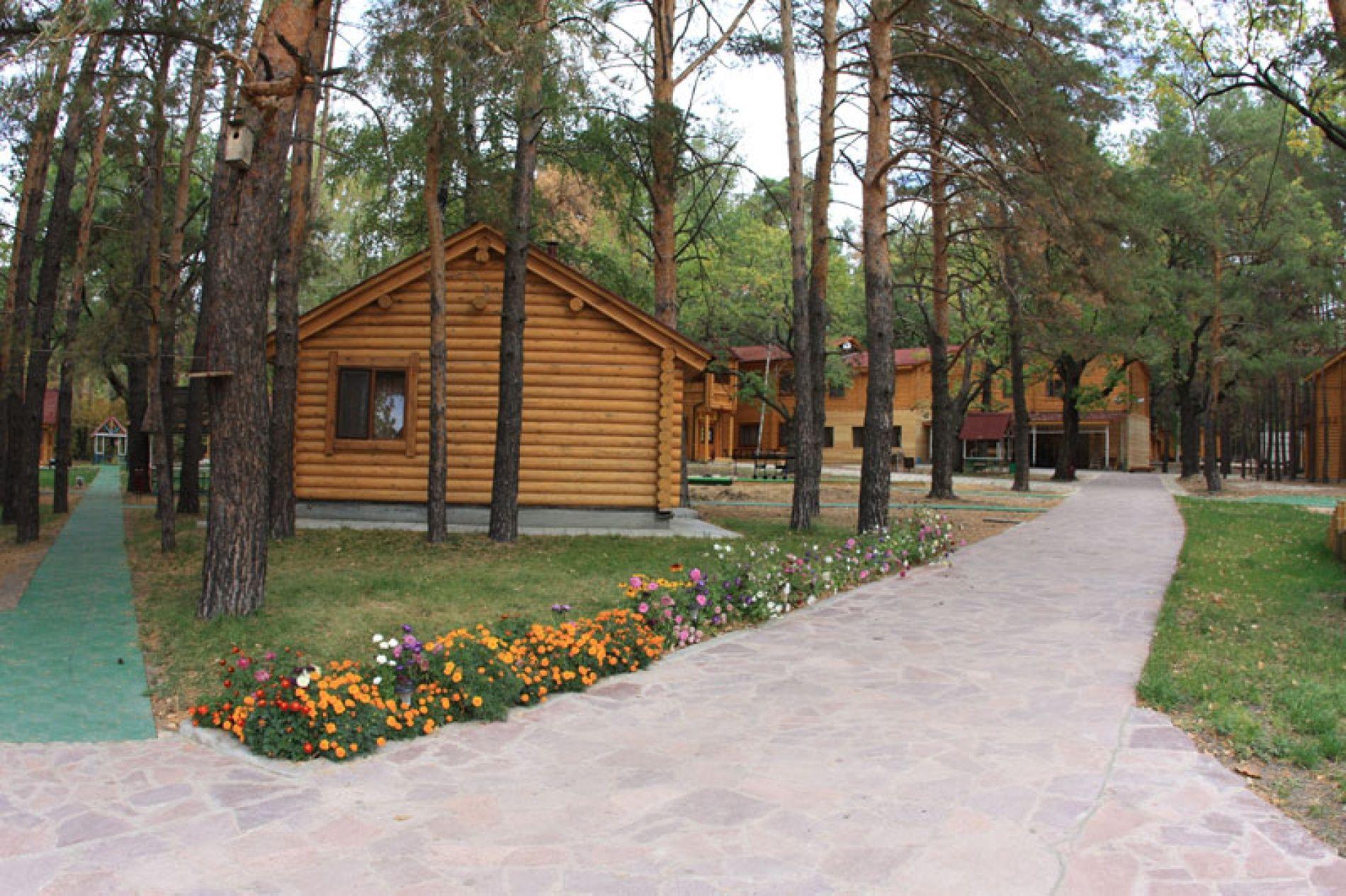 """База отдыха """"Медик"""" Самарская область, фото 2"""