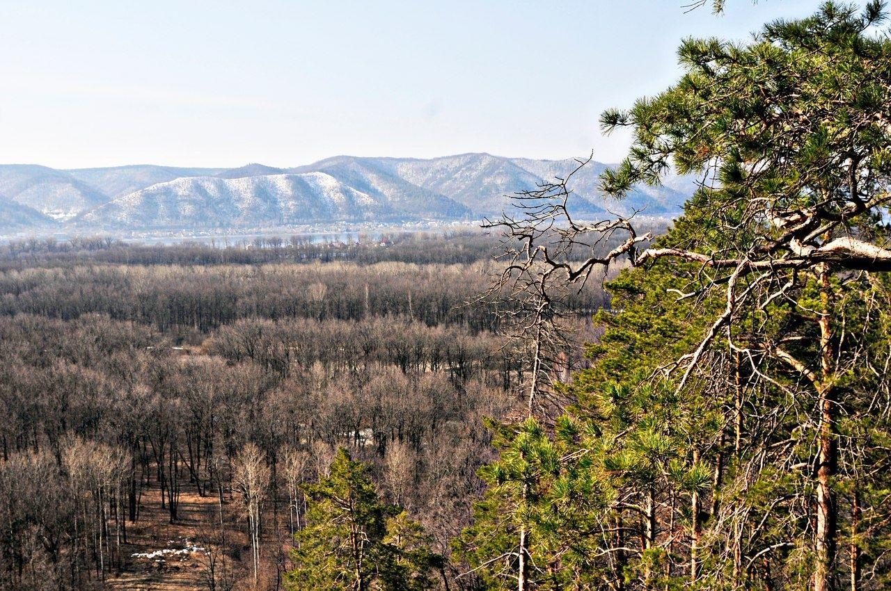 """Природно-оздоровительная база отдыха """"Радуга"""" Самарская область, фото 8"""