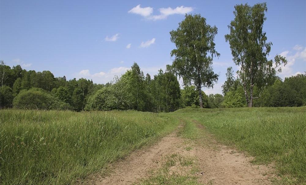 """Пансионат """"Дружба"""" Московская область, фото 6"""