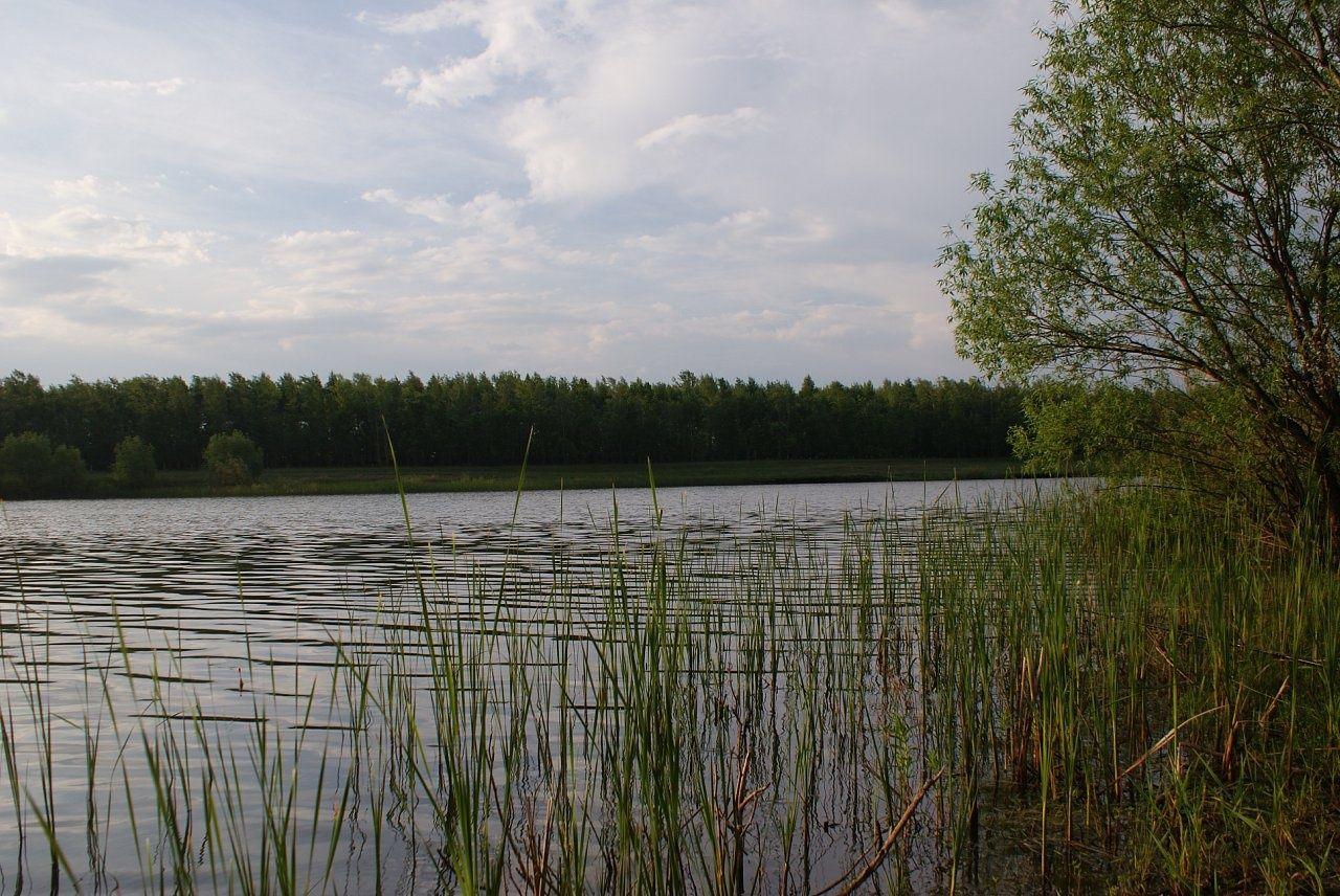 База отдыха «Три озера» Самарская область, фото 6