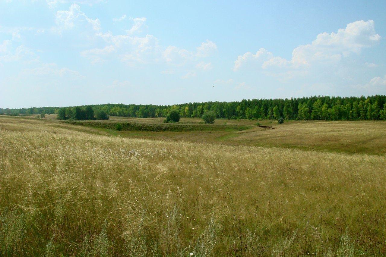 База отдыха «Три озера» Самарская область, фото 12