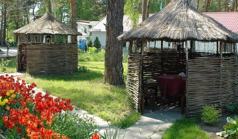 """Парк-отель """"Дракино"""" Московская область, фото 21"""
