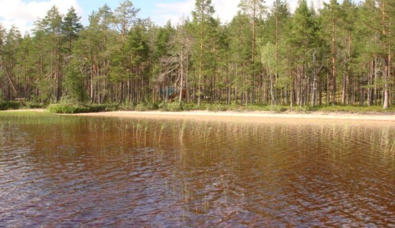 """Охотничье-рыболовная база """"Домик рыбака на озере Ровкульское"""" Республика Карелия, фото 7"""