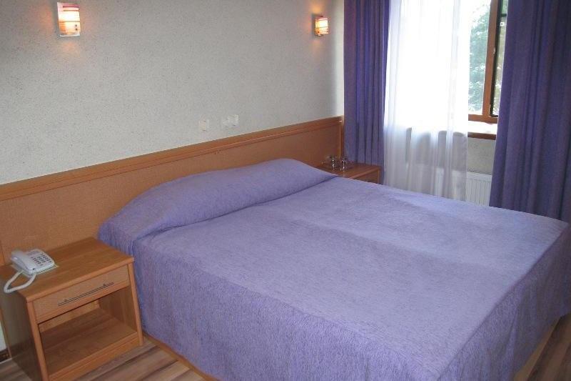 Загородный отель «Тирс» Тверская область Стандартный 1-местный номер «плюс» с видом на реку (В7, С1), фото 1