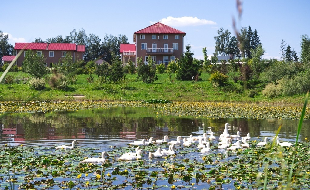 Загородный гостиничный комплекс «Алексино-Истра» Московская область, фото 9