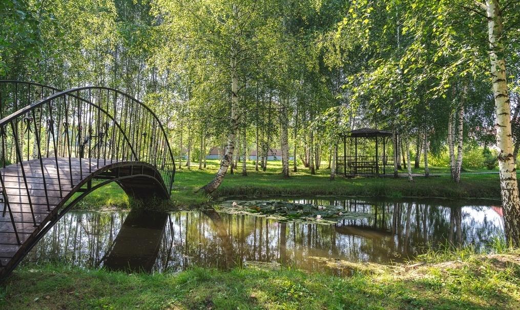 Загородный гостиничный комплекс «Алексино-Истра» Московская область, фото 25