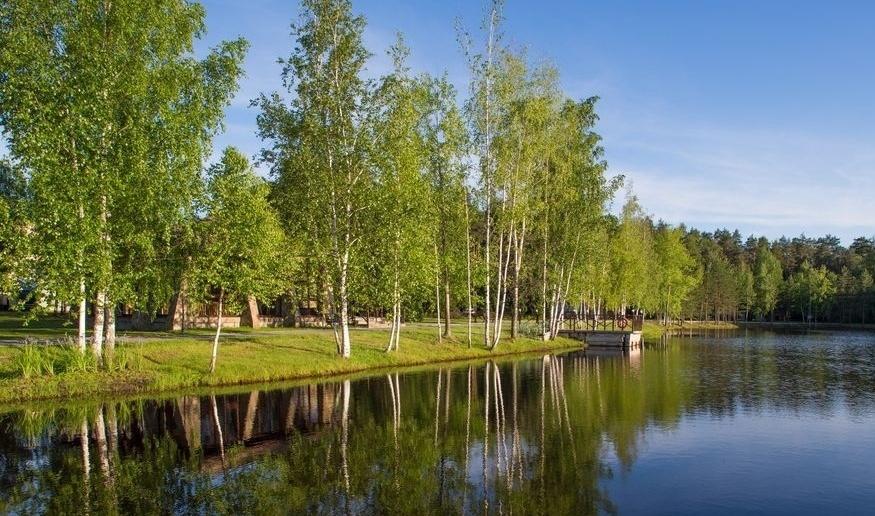 Парк-отель «Анива» Московская область, фото 16