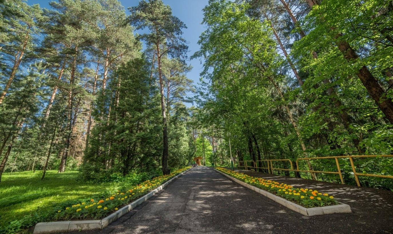 Пансионат «Солнечная поляна» Московская область, фото 15