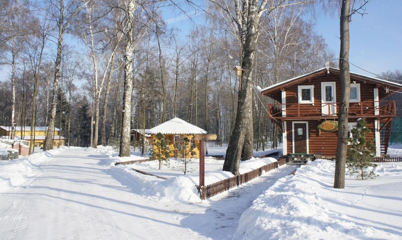 База отдыха «Березовая роща» Московская область, фото 17