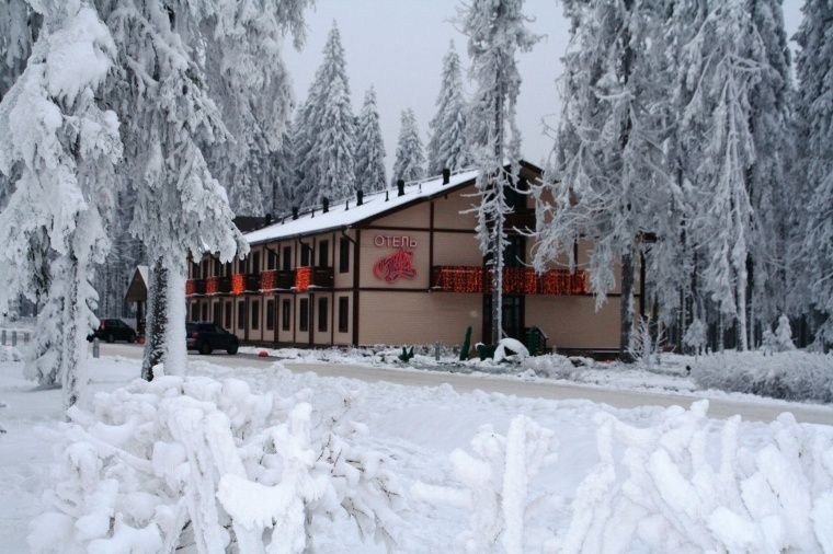 Горноклиматический курорт «Игора» Ленинградская область, фото 3