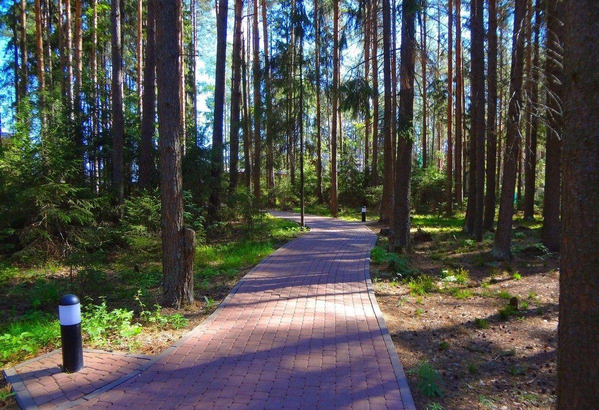 База отдыха «Изумрудное» Нижегородская область, фото 14