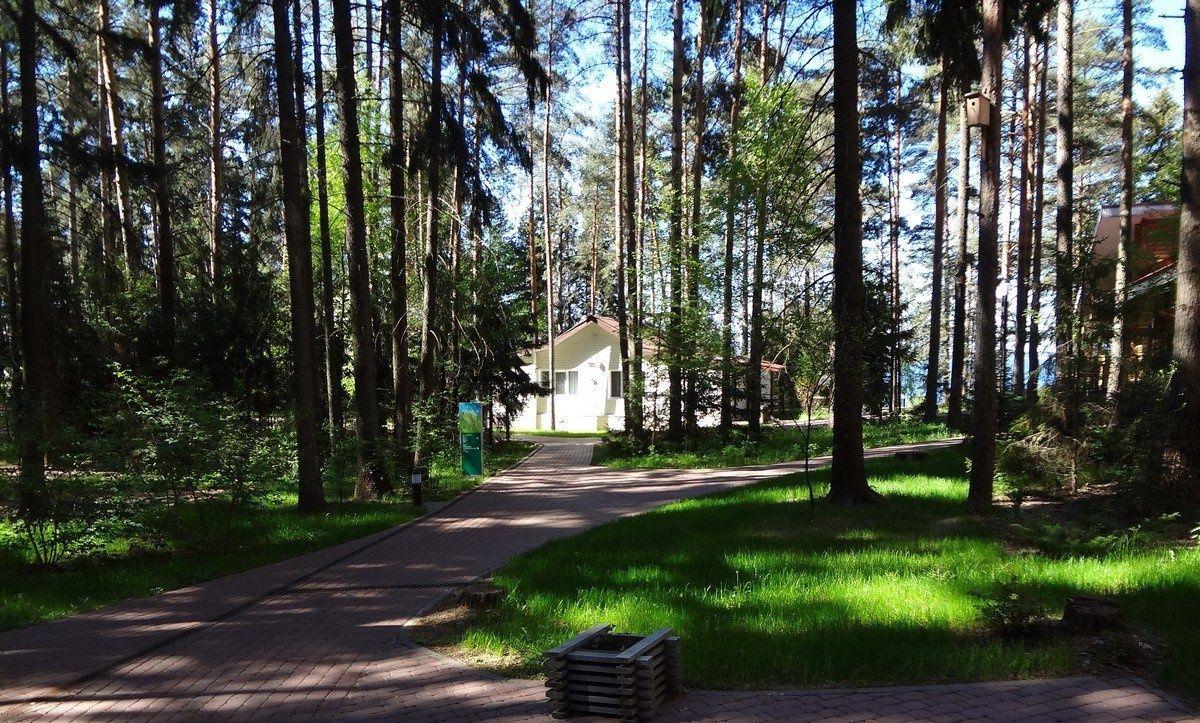"""База отдыха """"Изумрудное"""" Нижегородская область, фото 13"""
