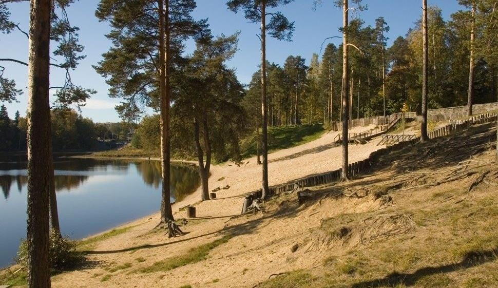 База отдыха «Лесные озёрки» Ленинградская область, фото 25