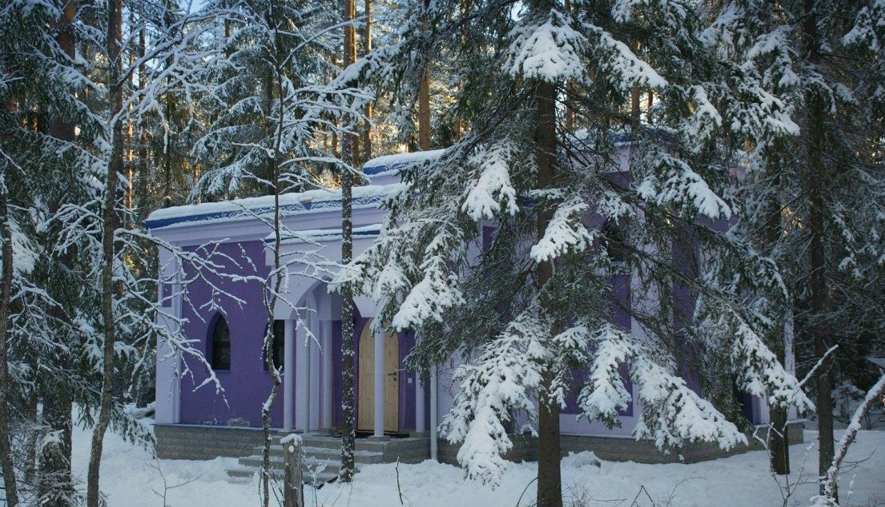 """База отдыха """"Шишки на Лампушке"""" Ленинградская область, фото 11"""