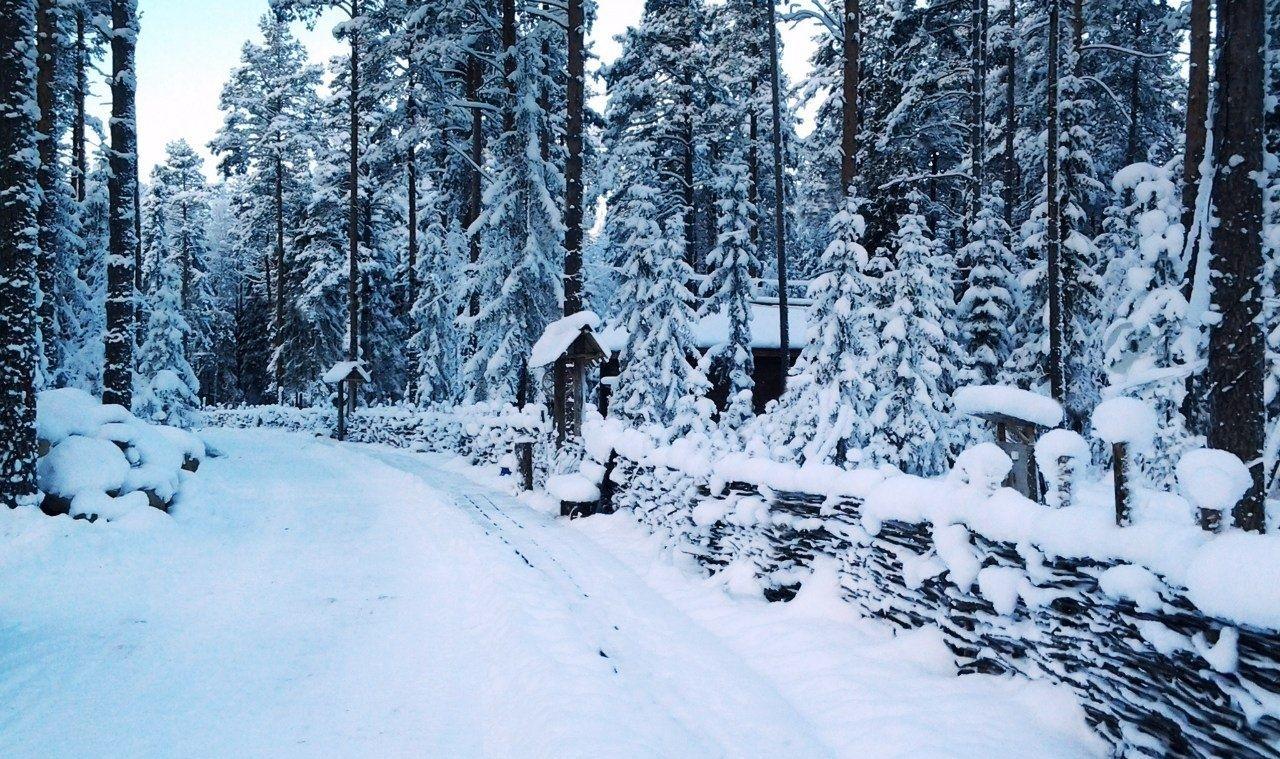 """База отдыха """"Шишки на Лампушке"""" Ленинградская область, фото 37"""