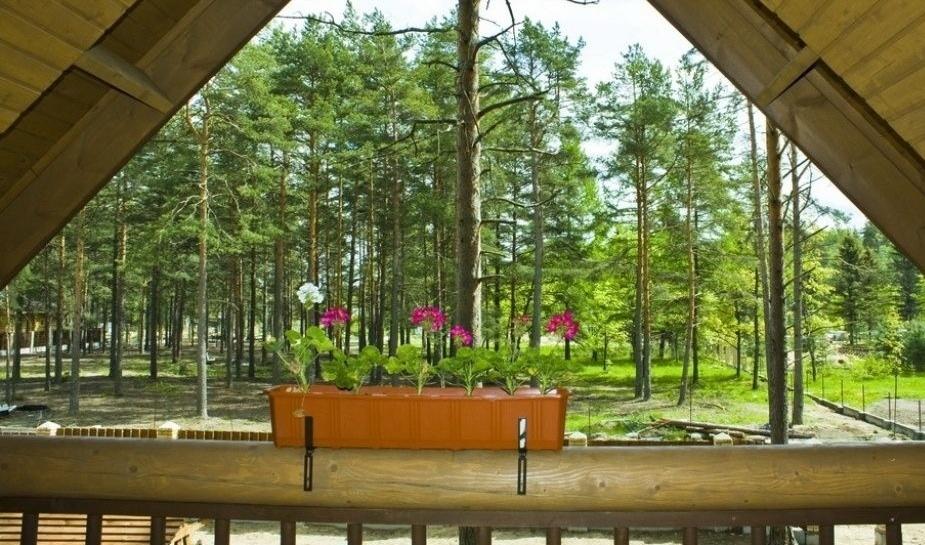 Загородный коттедж-клуб «Брусника» Ленинградская область, фото 4
