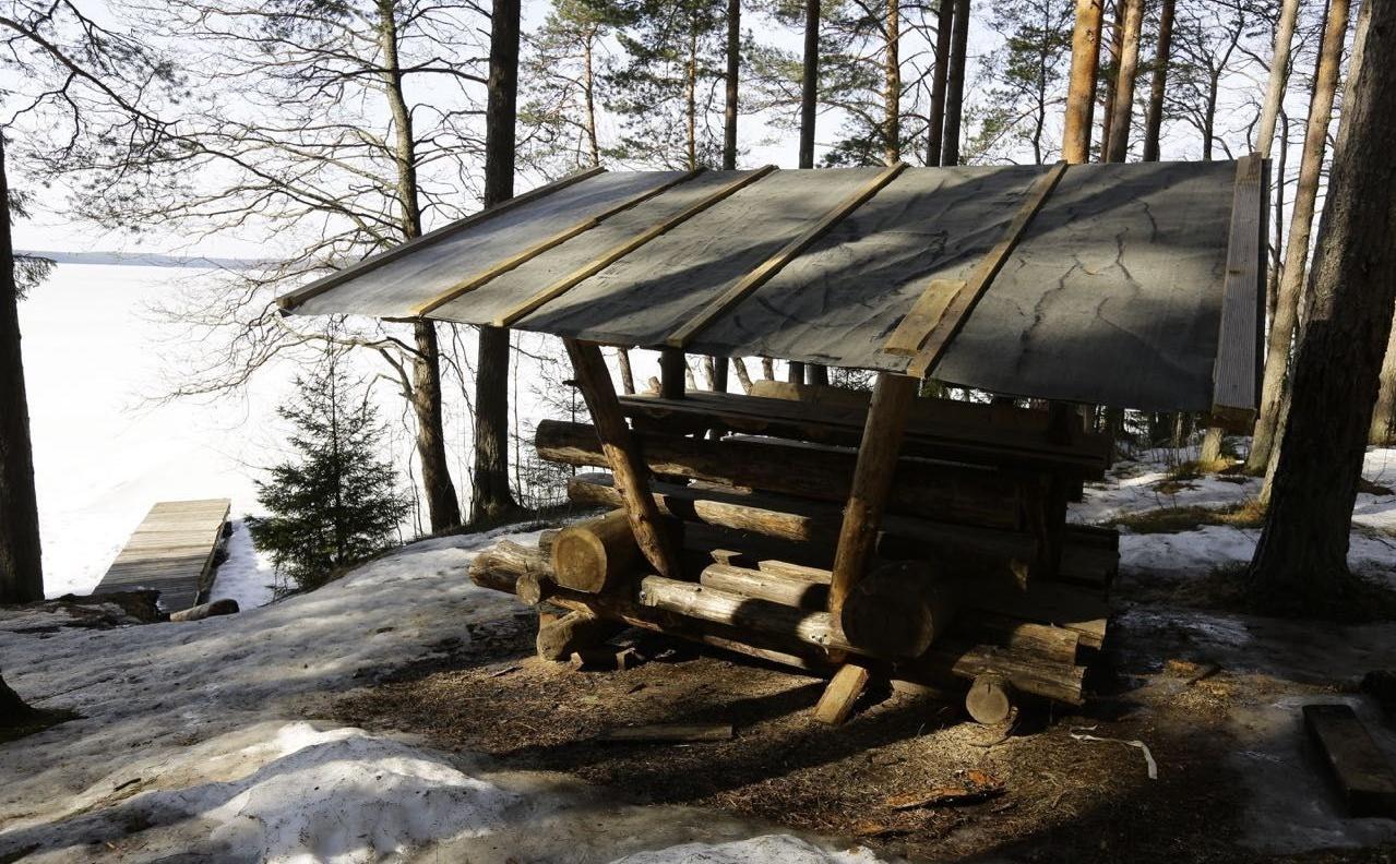 Эко-отель «Лес» Ленинградская область, фото 23