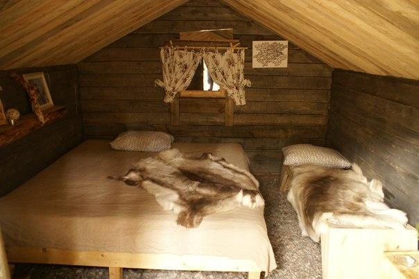 Эко-отель «Лес» Ленинградская область Экодомик «У Аняши», фото 2