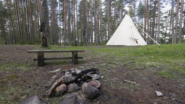 Эко-отель «Лес» Ленинградская область Типи с двумя кроватями, фото 1