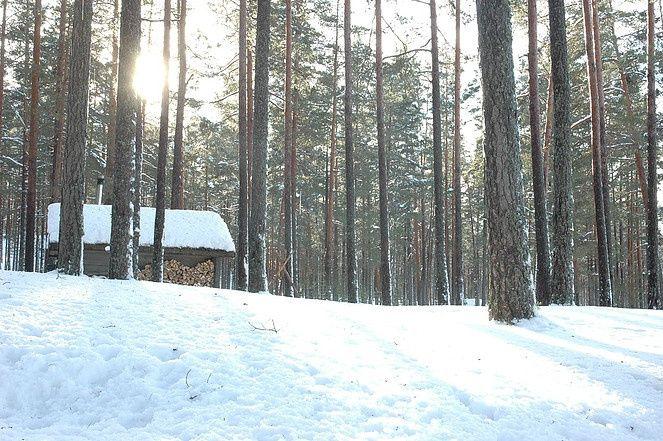 Эко-отель «Лес» Ленинградская область, фото 21