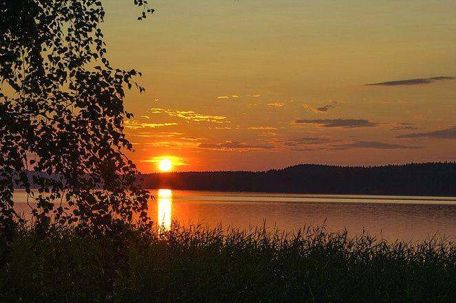 Эко-отель «Лес» Ленинградская область, фото 18