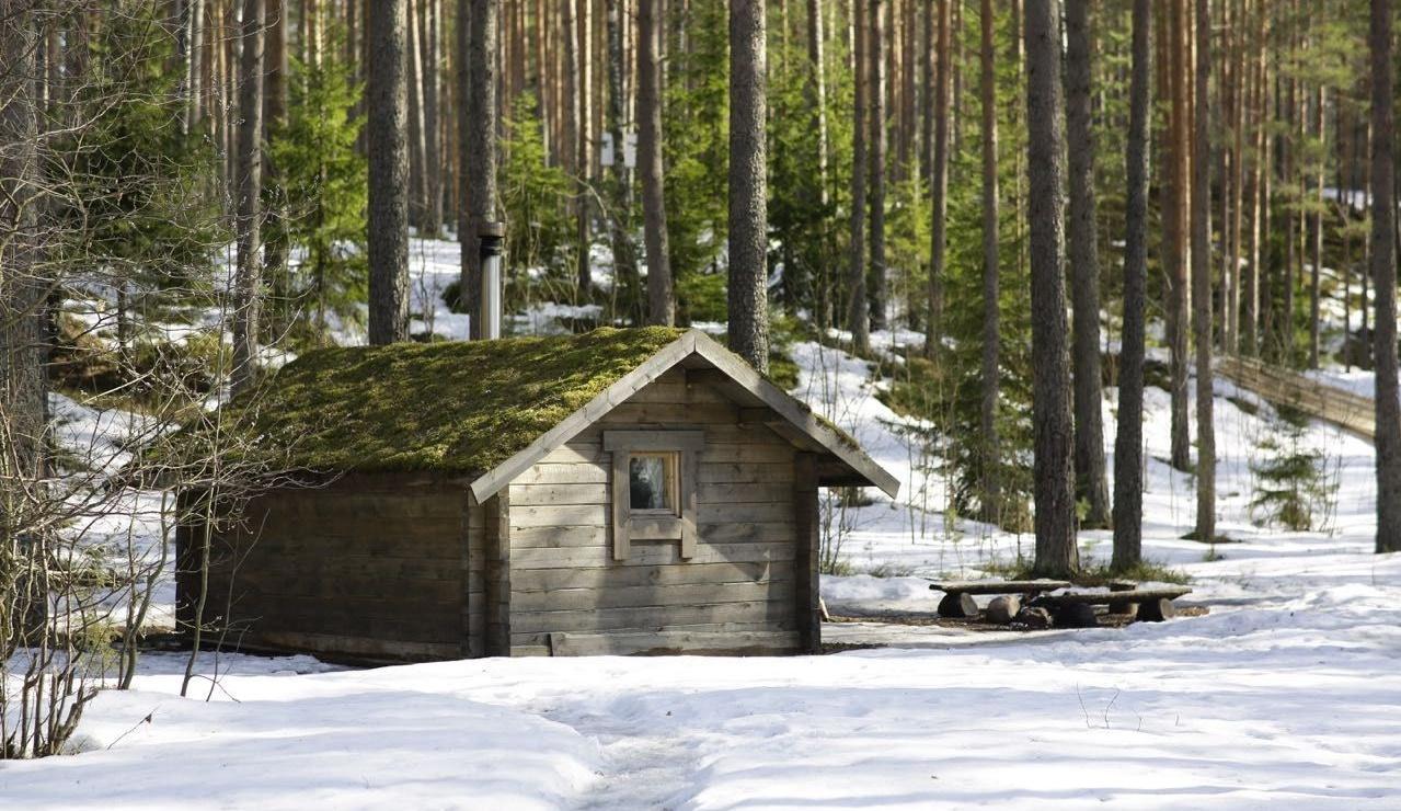 Эко-отель «Лес» Ленинградская область, фото 24