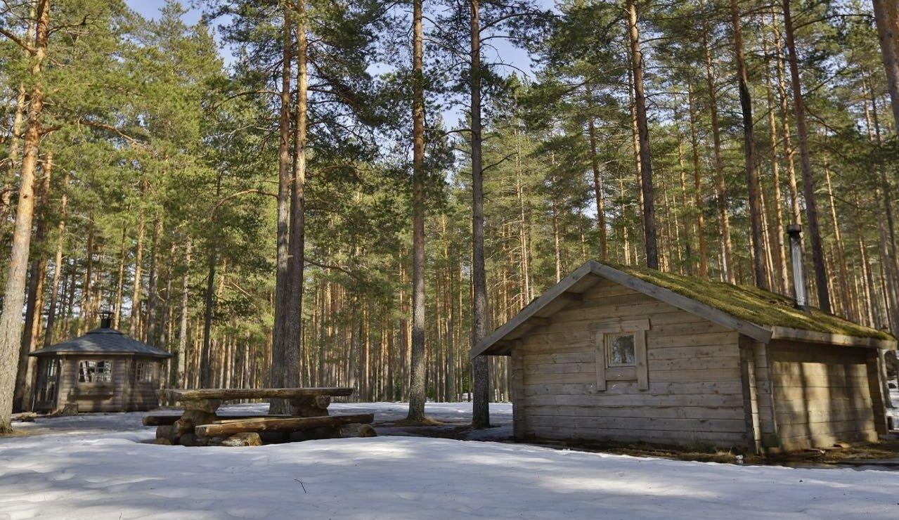 Эко-отель «Лес» Ленинградская область, фото 19