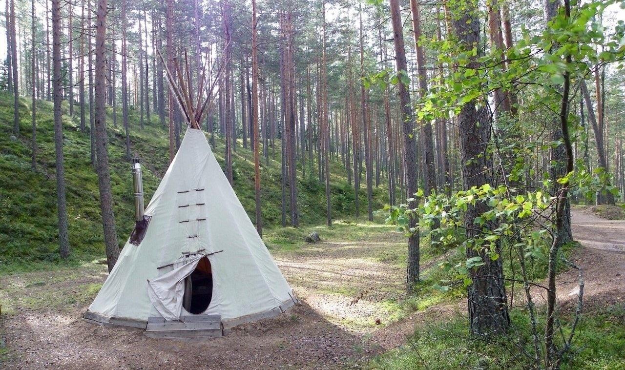 Эко-отель «Лес» Ленинградская область, фото 6