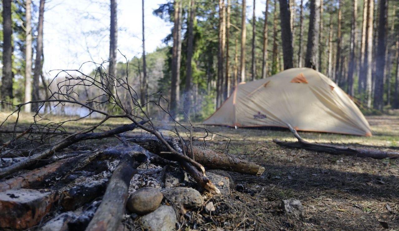 Эко-отель «Лес» Ленинградская область, фото 10
