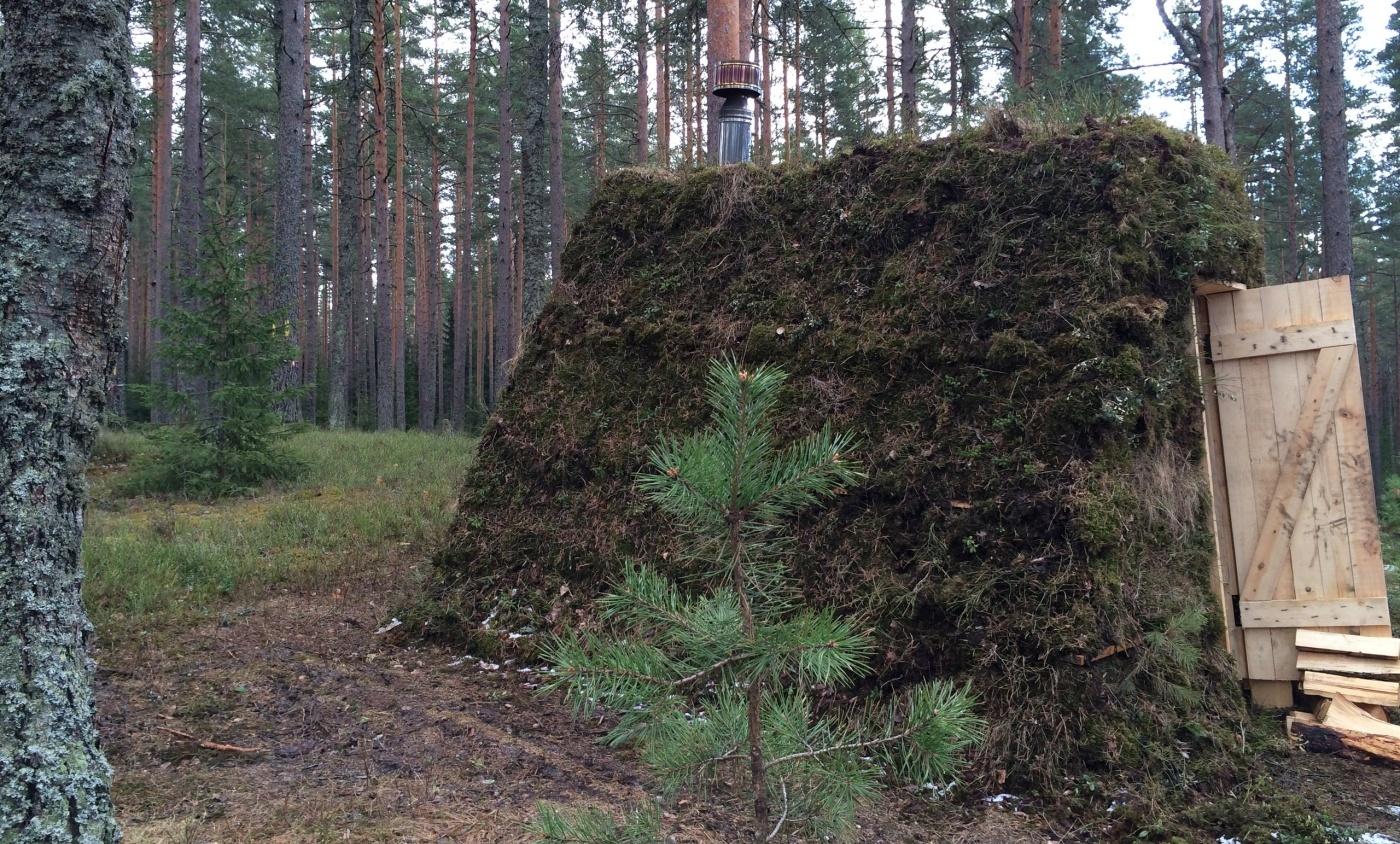 Эко-отель «Лес» Ленинградская область, фото 3