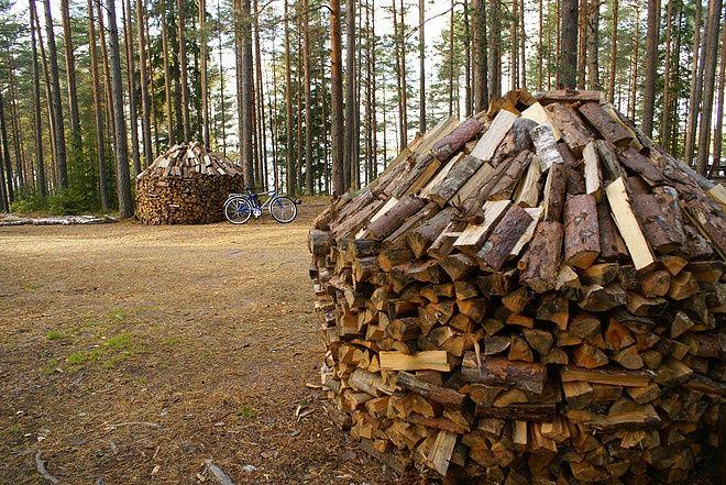 Эко-отель «Лес» Ленинградская область, фото 9