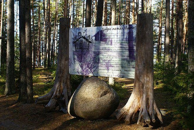 Эко-отель «Лес» Ленинградская область, фото 11