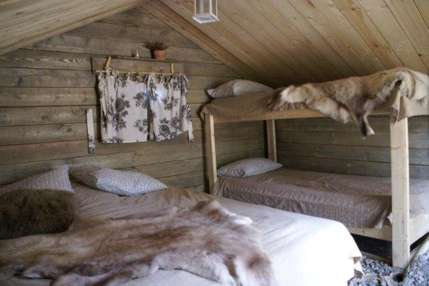 Эко-отель «Лес» Ленинградская область Экодомик «У Эми и Лео», фото 3