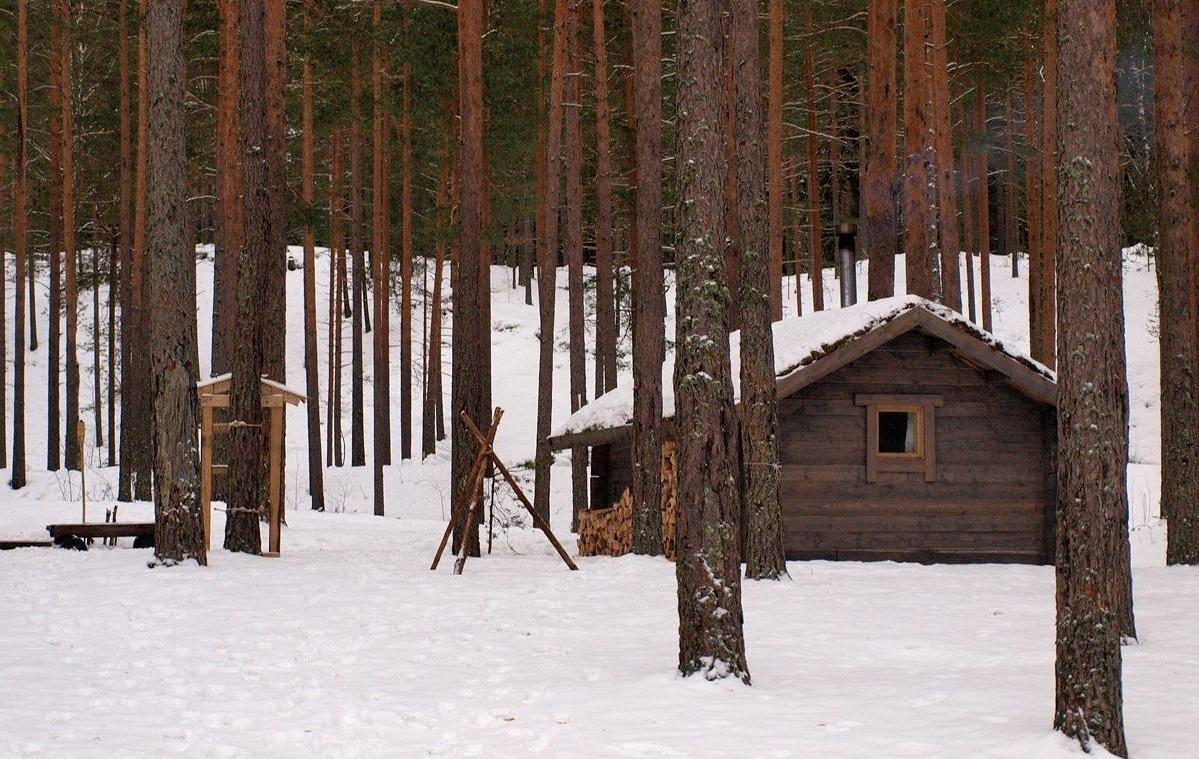 Эко-отель «Лес» Ленинградская область, фото 20