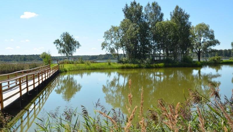 База отдыха «Рыбацкое подворье Владимировка» Московская область, фото 21