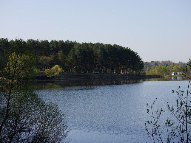 База отдыха «Калипсо» Московская область, фото 12