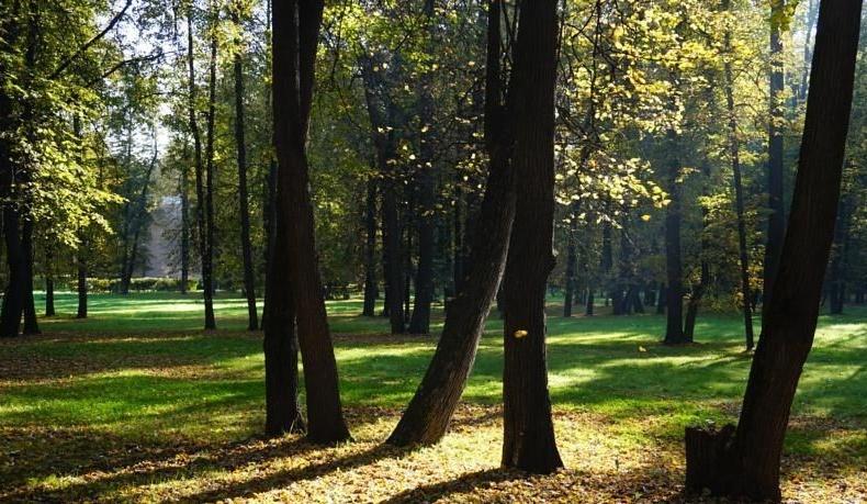 """Парк-отель Конгресс-парк """"Волынское"""" город Москва, фото 7"""