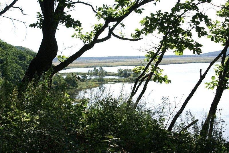 База отдыха «Зеркальная» Приморский край, фото 13