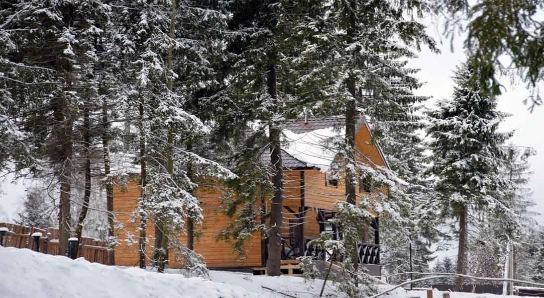 Экодеревня «Бабин двор» Московская область Коттедж «В лесу» №9, фото 1