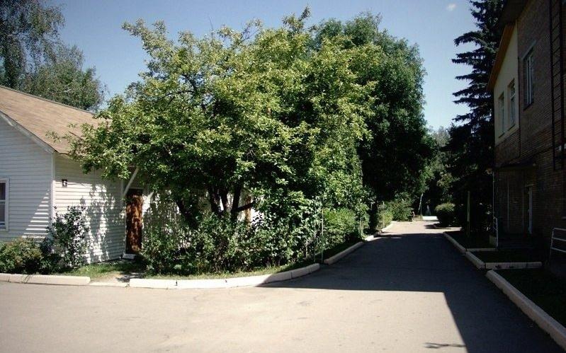 """База отдыха """"Спутник"""" Московская область, фото 2"""