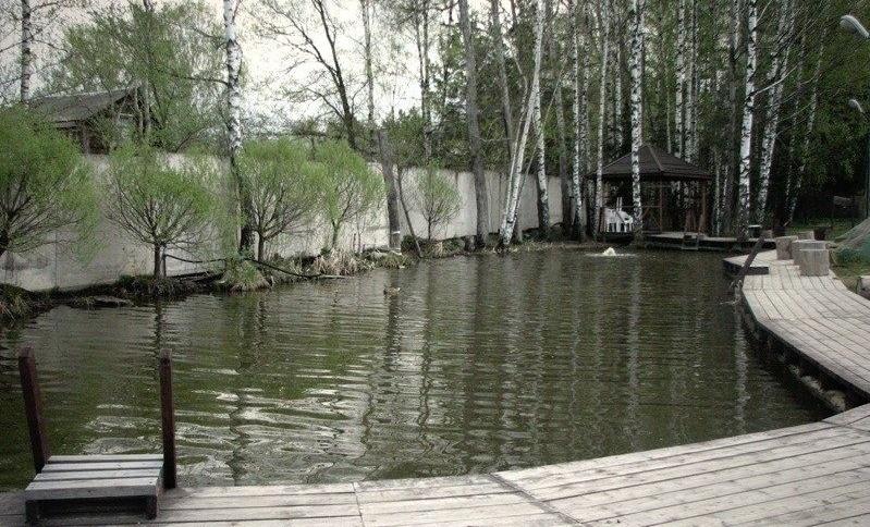Загородный Комплекс «Спутник» Московская область, фото 14