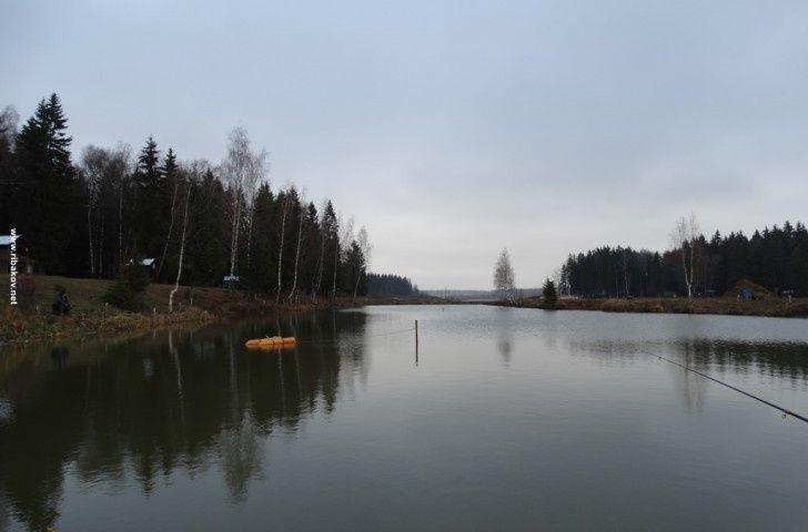 """Рыболовная база """"Савельево"""" Московская область, фото 5"""
