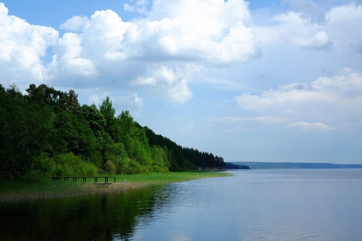 База отдыха «Тихая долина» Ленинградская область, фото 8