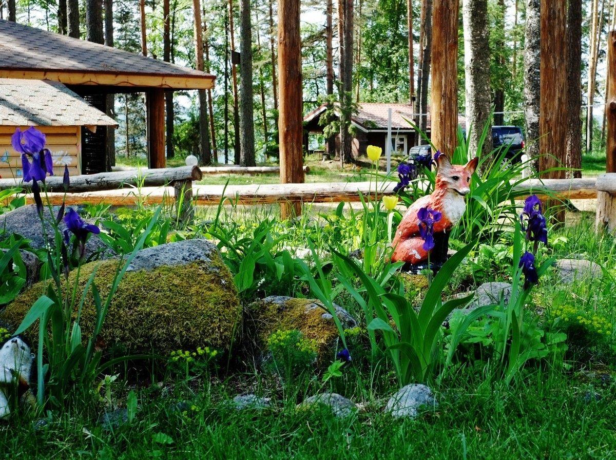 База отдыха «Тихая долина» Ленинградская область, фото 7