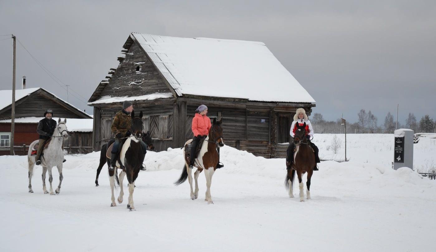 Конный двор «Струги» Ленинградская область, фото 1