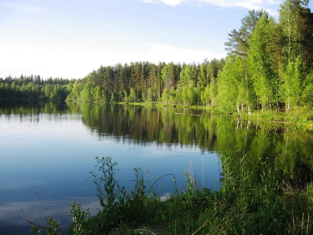 Коттедж «Холидей Вилла» Ленинградская область, фото 8