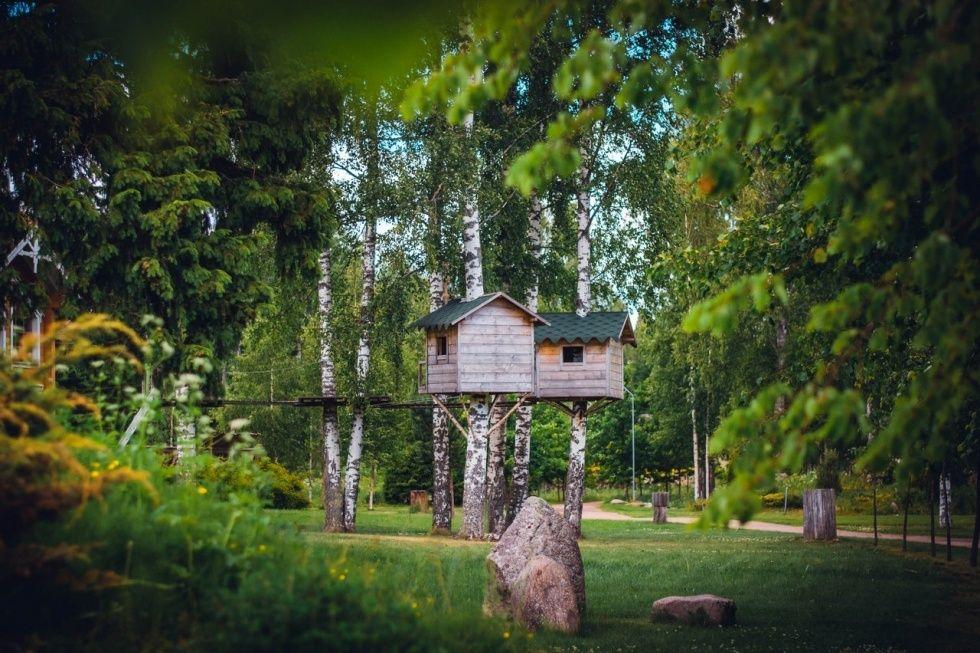 Парк-отель «Дубрава» Ленинградская область, фото 13