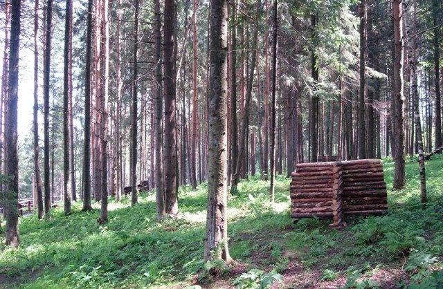 "Парк активного отдыха ""Жебреи"" Пермский край, фото 21"
