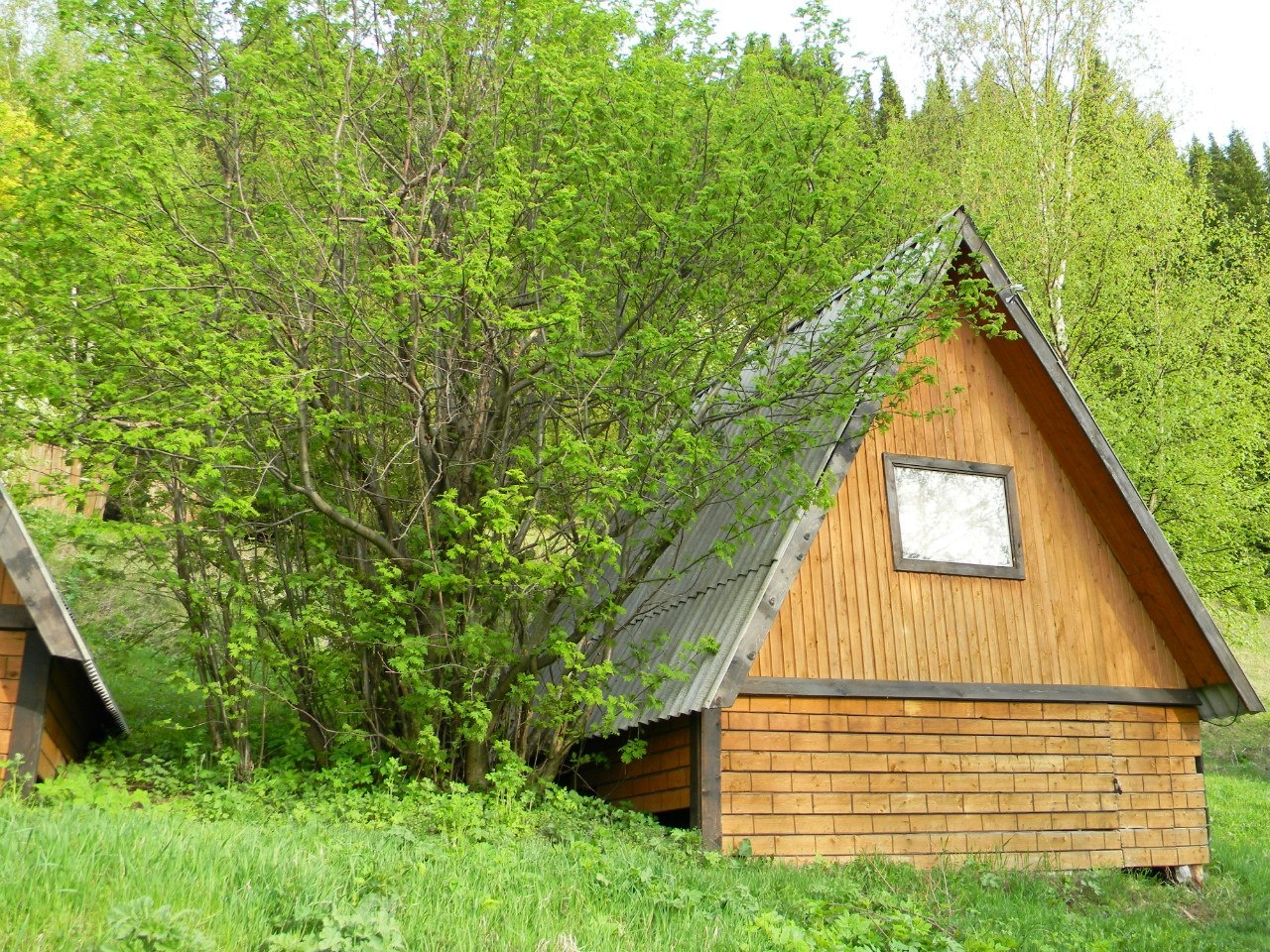 Центр отдыха «Калинино» Пермский край, фото 3