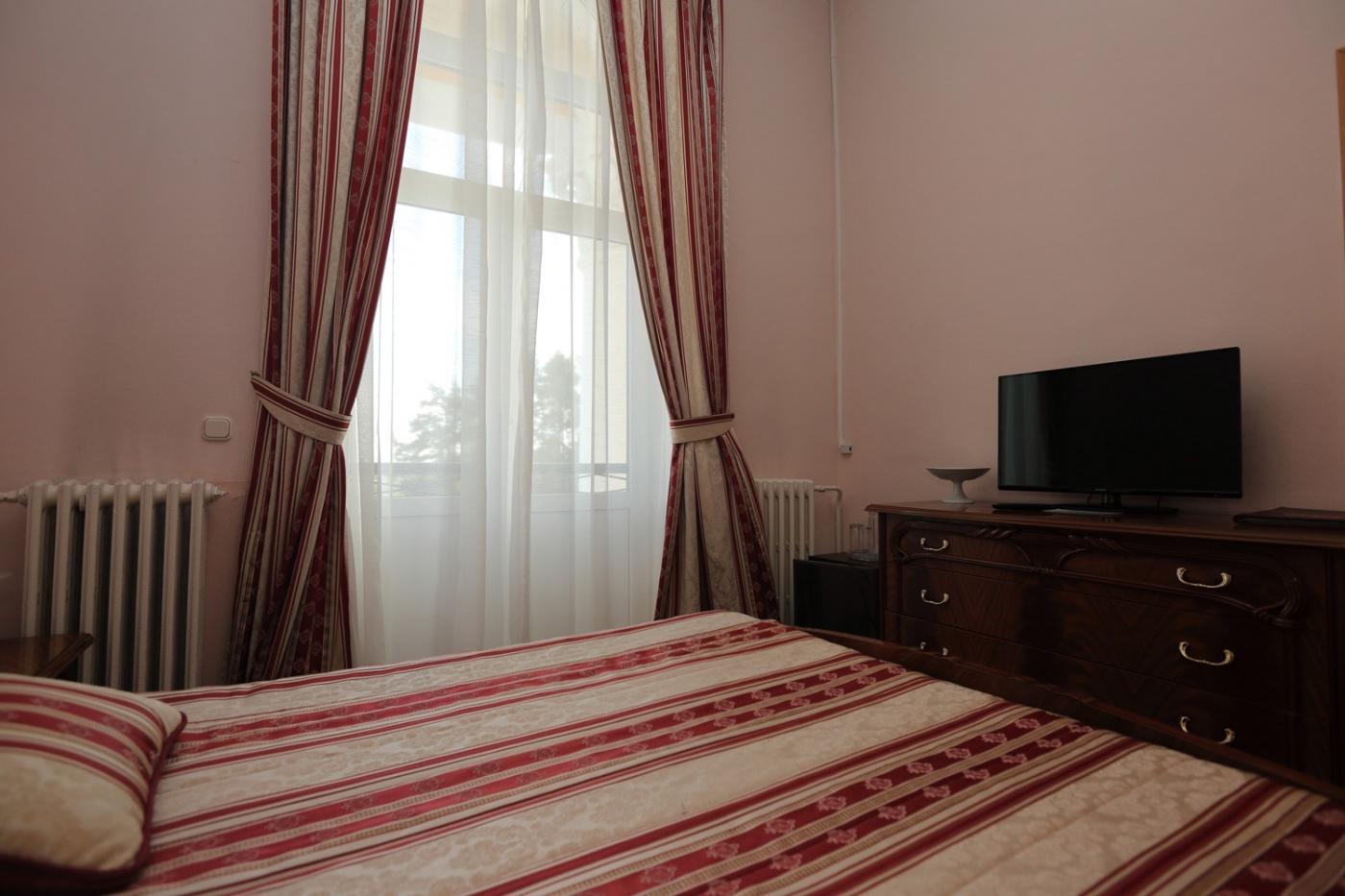 Пансионат «Бор» Московская область 1-комнатный 2-местный номер (Отель), фото 2